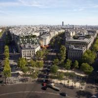 Como gestiona el arbolado la ciudad de París