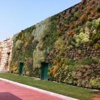 Zonas verdes y calidad de vida