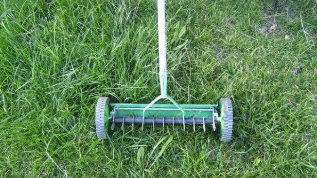 Jardines privados domesticos contemporaneos el cesped - Cortar hierba alta ...