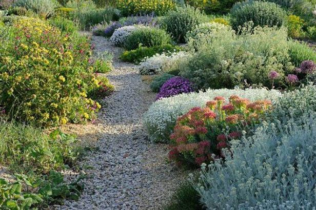 Jardines privados contemporaneos jardin mediterraneo Plantas jardin mediterraneo