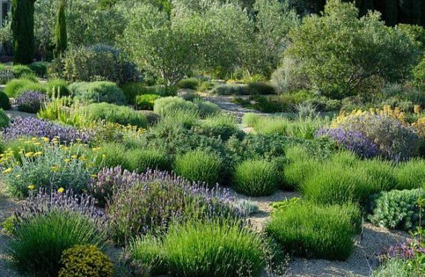 Jardines privados contemporaneos jardin mediterraneo for Plantas jardin mediterraneo