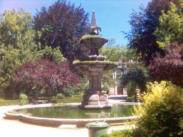 Botanico Coimbra4
