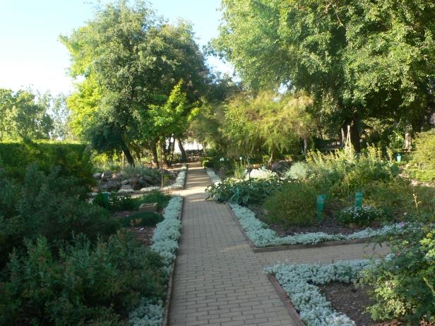 Dise ador del invernadero tropical del jardin botanico de valencia casa dise o - Disenador de jardines ...