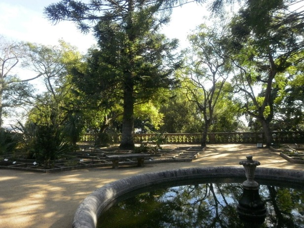 Jardim Botanico Ajuda-Lisboa.-xamn
