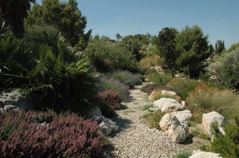 Jardines botanicos de espa a jardines sin fronteras for Los jardines de lola