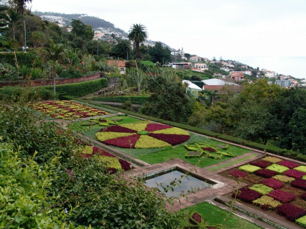 Madeira Botanic.-8_redimensionar (2)