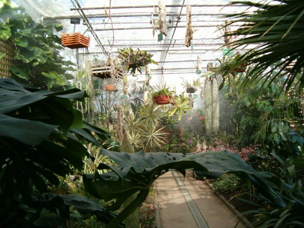 Jardines Botanicos De Espana Jardines Sin Fronteras