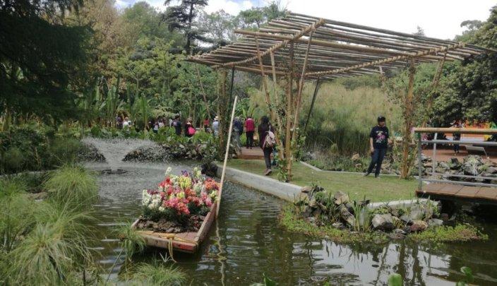 Jardines botanicos de america del sur y america central for Carson bosque y jardin