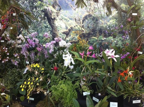 Alter Botanischer Garten Kiel: JARDINES BOTANICOS ALEMANES