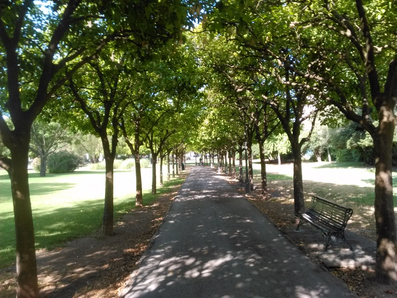 LOS CITRICOS ORNAMENTALES EN EUROPA Y AMERICA – Jardines sin fronteras