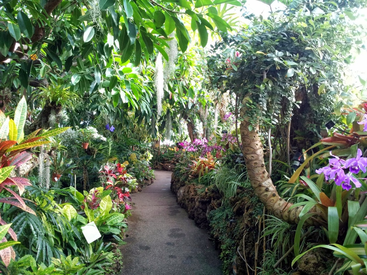 JARDINES BOTANICOS EN ESTADOS UNIDOS – Jardines sin fronteras