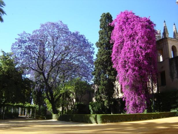 Inventario actualizado de las zonas verdes de la ciudad - Jardines verticales sevilla ...