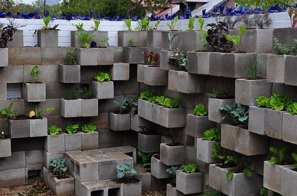 Muros verdes y jardines verticales jardines sin fronteras for Muros verdes naturales