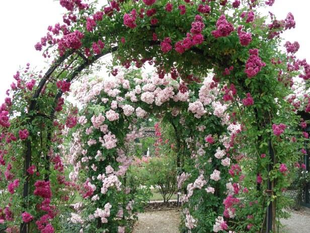 L´Hay les Roses.-paris 129