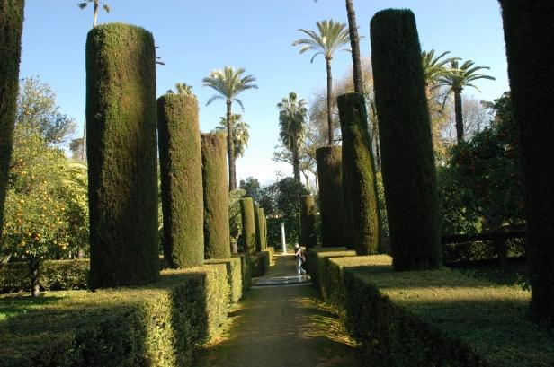 Jardines del Alcázar.-Jardines del Marqués de Vega Inclán.-Cipreses recortados