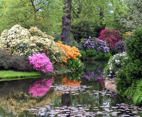 Arboretum Tromperburg. jardin-botanico Rotterdam.-Holanda