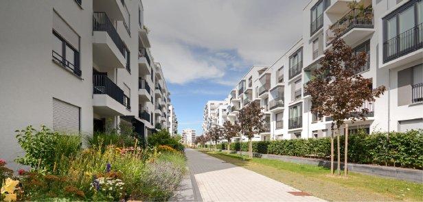 la-planificacic3b3n-del-paisajeheader-architekt-goldmann