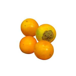 Naranjilla.-a