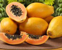 papaya-1024x821