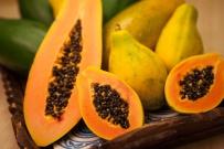 Papaya.-a
