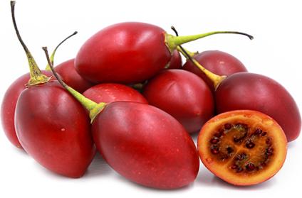 Tomatillo.-Solanum betaceum